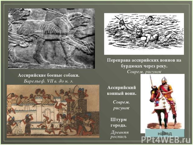 Ассирийские боевые собаки. Барельеф. VII в. до н. э. Переправа ассирийских воинов на бурдюках через реку. Соврем. рисунок Ассирийский конный воин. Соврем. рисунок Ассирийский конный воин. Соврем. рисунок Штурм города. Древняя роспись назад