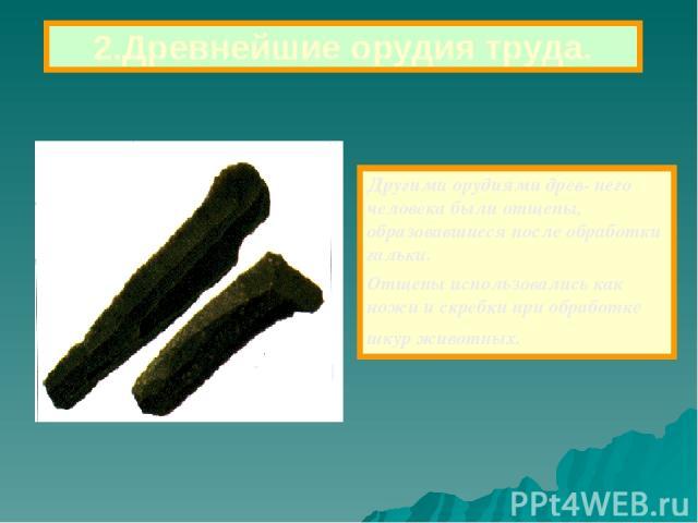 Другими орудиями древ- него человека были отщепы, образовавшиеся после обработки гальки. Отщепы использовались как ножи и скребки при обработке шкур животных. 2.Древнейшие орудия труда.