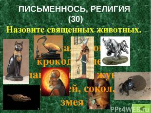 ПИСЬМЕННОСЬ, РЕЛИГИЯ (30) Назовите священных животных. Кошка, корова, крокодил,