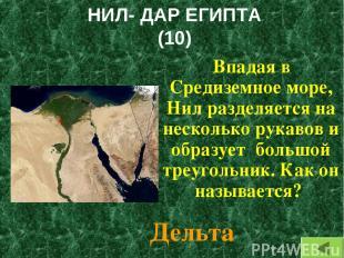 НИЛ- ДАР ЕГИПТА (10) Впадая в Средиземное море, Нил разделяется на несколько рук