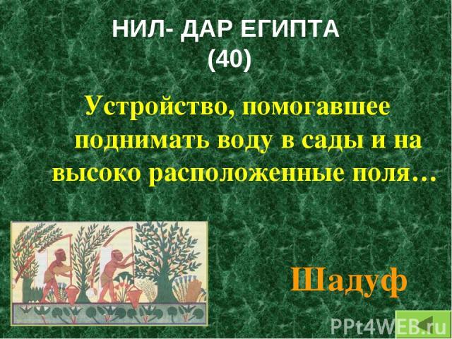 НИЛ- ДАР ЕГИПТА (40) Устройство, помогавшее поднимать воду в сады и на высоко расположенные поля… Шадуф