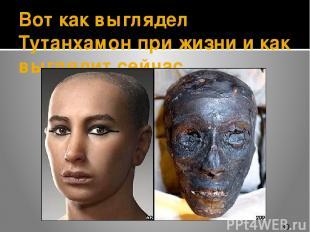 Вот как выглядел Тутанхамон при жизни и как выглядит сейчас.