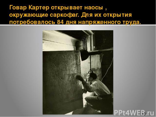 Говар Картер открывает наосы , окружающие саркофаг. Для их открытия потребовалось 84 дня напряженного труда.