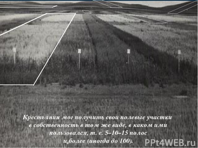 Крестьянин мог получить свои полевые участки в собственность в том же виде, в каком ими пользовался, т. е. 5–10–15 полос и более (иногда до 100).