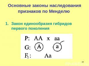 * Основные законы наследования признаков по Менделю Закон единообразия гибридов