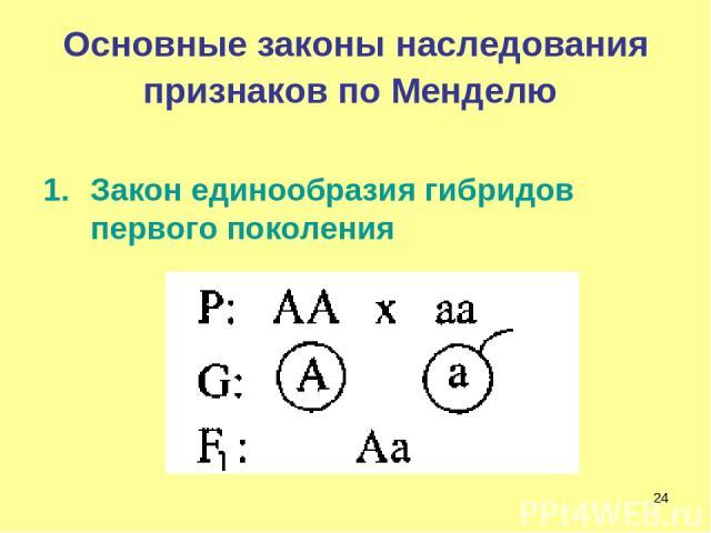 * Основные законы наследования признаков по Менделю Закон единообразия гибридов первого поколения