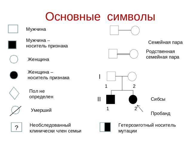 Основные символы Семейная пара ǀ ΙΙ ? 1 2 1 2 Необследованный клинически член семьи Гетерозиготный носитель мутации
