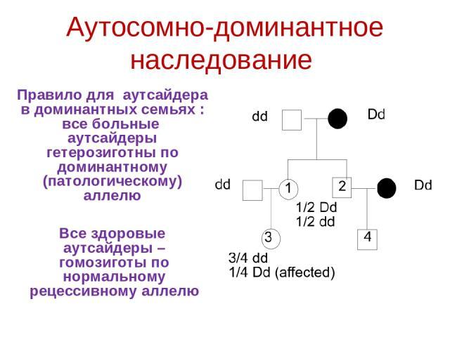 Аутосомно-доминантное наследование Правило для аутсайдера в доминантных семьях : все больные аутсайдеры гетерозиготны по доминантному (патологическому) аллелю Все здоровые аутсайдеры – гомозиготы по нормальному рецессивному аллелю