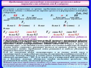 Предпочтительное расхождение гомологичных хромосом в мейозе (нарушение в наследо