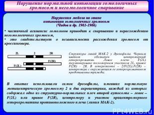 Нарушения мейоза на этапе коньюгации гомологичных хромосом (Чадов и др. 1981-198