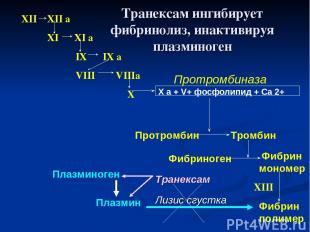 XII XII a XI XI a IX IX a VIII VIIIa X X a + V+ фосфолипид + Са 2+ Протромбиназа