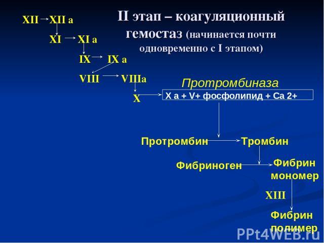 XII XII a XI XI a IX IX a VIII VIIIa X X a + V+ фосфолипид + Са 2+ Протромбиназа Протромбин Тромбин Фибриноген Фибрин мономер Фибрин полимер XIII II этап – коагуляционный гемостаз (начинается почти одновременно с I этапом)