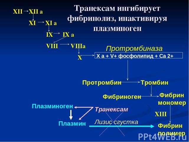 XII XII a XI XI a IX IX a VIII VIIIa X X a + V+ фосфолипид + Са 2+ Протромбиназа Протромбин Тромбин Фибриноген Фибрин мономер Фибрин полимер XIII Плазмин Плазминоген Лизис сгустка Транексам Транексам ингибирует фибринолиз, инактивируя плазминоген