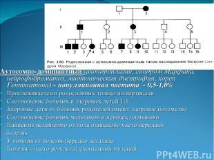 Аутосомно-доминантный (ахондроплазия, синдром Марфана, нейрофиброматоз, миотонич