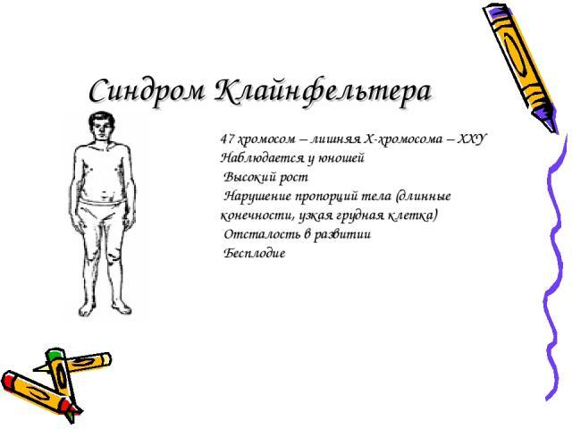 Синдром Клайнфельтера 47 хромосом – лишняя Х-хромосома – ХХY Наблюдается у юношей Высокий рост Нарушение пропорций тела (длинные конечности, узкая грудная клетка) Отсталость в развитии Бесплодие
