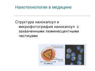 Нанотехнологии в медицине Структура нанокапсул и микрофотография нанокапсул с за