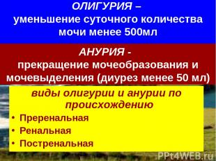 ОЛИГУРИЯ – уменьшение суточного количества мочи менее 500мл виды олигурии и анур