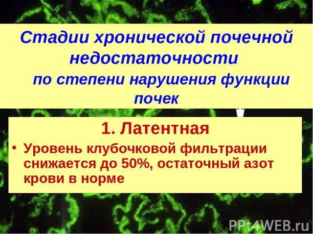 Стадии хронической почечной недостаточности по степени нарушения функции почек 1. Латентная Уровень клубочковой фильтрации снижается до 50%, остаточный азот крови в норме