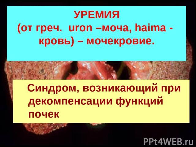 УРЕМИЯ (от греч. uron –моча, haima - кровь) – мочекровие. Синдром, возникающий при декомпенсации функций почек
