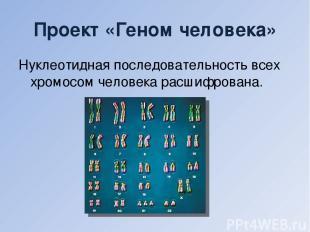 Проект «Геном человека» Нуклеотидная последовательность всех хромосом человека р