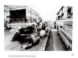 * http://www.indiaimages.com/street/street_life2_large.jpg
