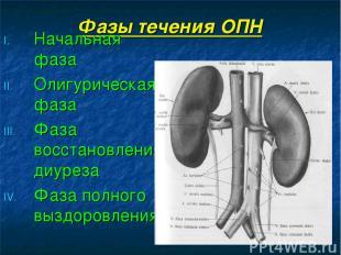 Фазы течения ОПН Начальная фаза Олигурическая фаза Фаза восстановления диуреза Ф