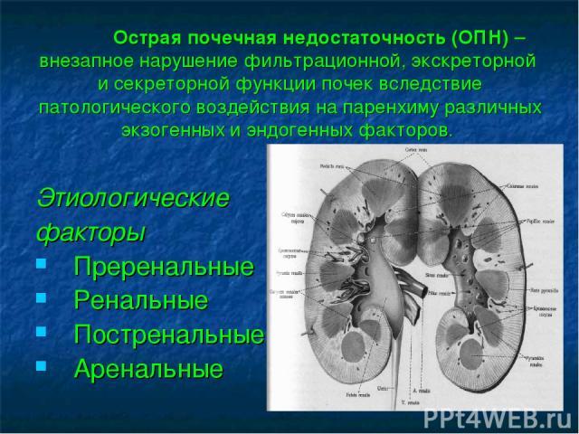 Острая почечная недостаточность (ОПН) – внезапное нарушение фильтрационной, экскреторной и секреторной функции почек вследствие патологического воздействия на паренхиму различных экзогенных и эндогенных факторов. Этиологические факторы Преренальные …