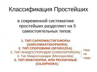 Классификация Простейших в современной систематике простейших разделяют на 5 сам