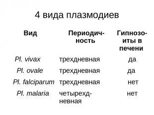 4 вида плазмодиев Вид Периодич-ность Гипнозо-иты в печени Pl. vivax трехдневная