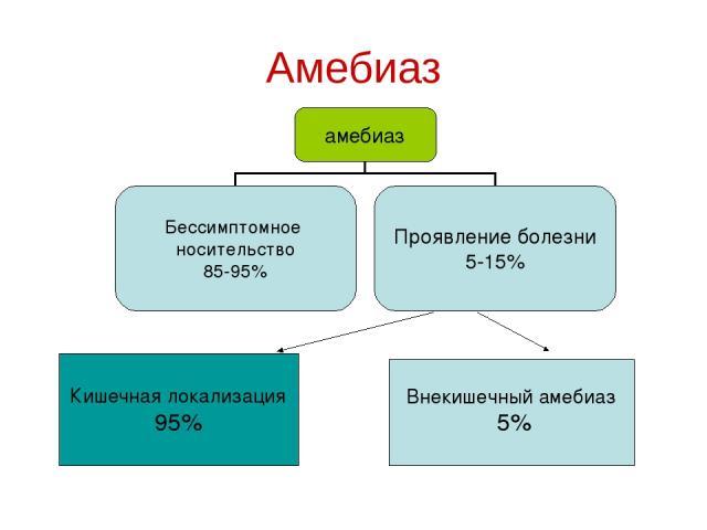 Амебиаз Кишечная локализация 95% Внекишечный амебиаз 5%