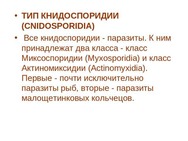 ТИП КНИДОСПОРИДИИ (CNIDOSPORIDIA) Все книдоспоридии - паразиты. К ним принадлежат два класса - класс Миксоспоридии (Myxosporidia) и класс Актиномиксидии (Actinomyxidia). Первые - почти исключительно паразиты рыб, вторые - паразиты малощетинковых ко…