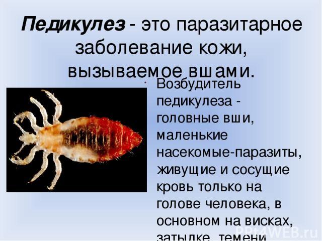 Педикулез - это паразитарное заболевание кожи, вызываемое вшами. Возбудитель педикулеза - головные вши, маленькие насекомые-паразиты, живущие и сосущие кровь только на голове человека, в основном на висках, затылке, темени.