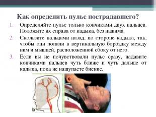 Как определить пульс пострадавшего? Определяйте пульс только кончиками двух паль