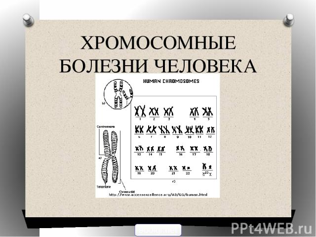 ХРОМОСОМНЫЕ БОЛЕЗНИ ЧЕЛОВЕКА 900igr.net
