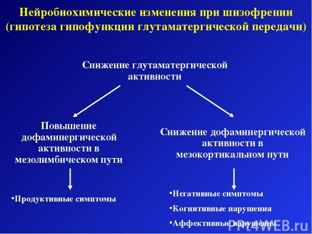 Нейробиохимические изменения при шизофрении (гипотеза гипофункции глутаматергической передачи) Снижение глутаматергической активности Повышение дофаминергической активности в мезолимбическом пути Снижение дофаминергической активности в мезокортикаль…