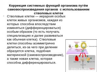 Коррекция системных функций организма путём самовоспроизведения органов с исполь