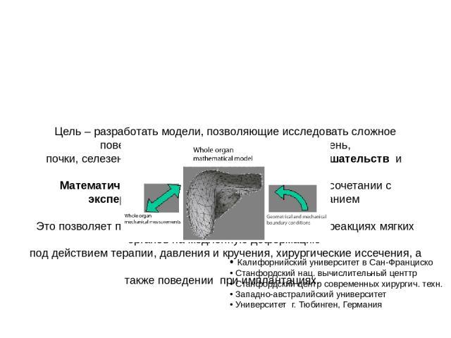 Цель – разработать модели, позволяющие исследовать сложное поведение мягких внутренних органов ( печень, почки, селезенка) под действием хирургических вмешательств и имплантаций. Математическое моделирование используется в сочетании с эксперименталь…