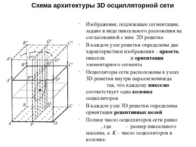 Схема архитектуры 3D осцилляторной сети Изображение, подлежащее сегментации, задано в виде пиксельного разложения на согласованной с ним 2D решетке В каждом узле решетки определены две характеристики изображения – яркость пикселя и ориентация элемен…