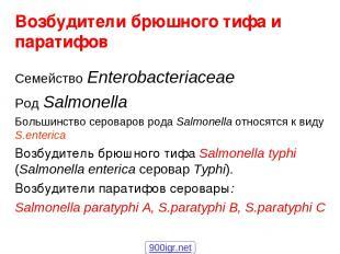 Возбудители брюшного тифа и паратифов Семейство Enterobacteriaceae Род Salmonell