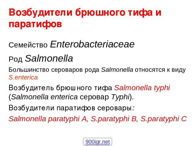 Возбудители брюшного тифа и паратифов Семейство Enterobacteriaceae Род Salmonella Большинство сероваров рода Salmonella относятся к виду S.enterica Возбудитель брюшного тифа Salmonella typhi (Salmonella enterica серовар Typhi). Возбудители паратифов…