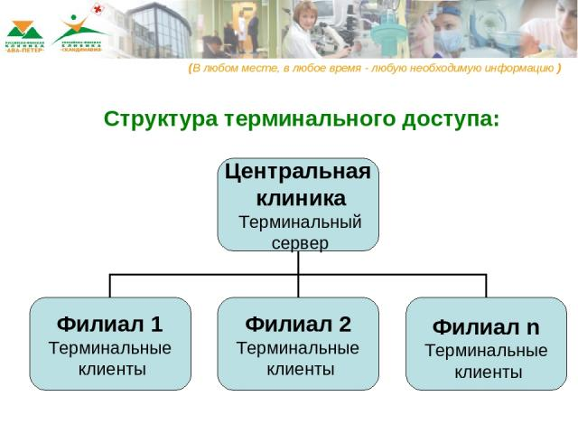 Структура терминального доступа: (В любом месте, в любое время - любую необходимую информацию )