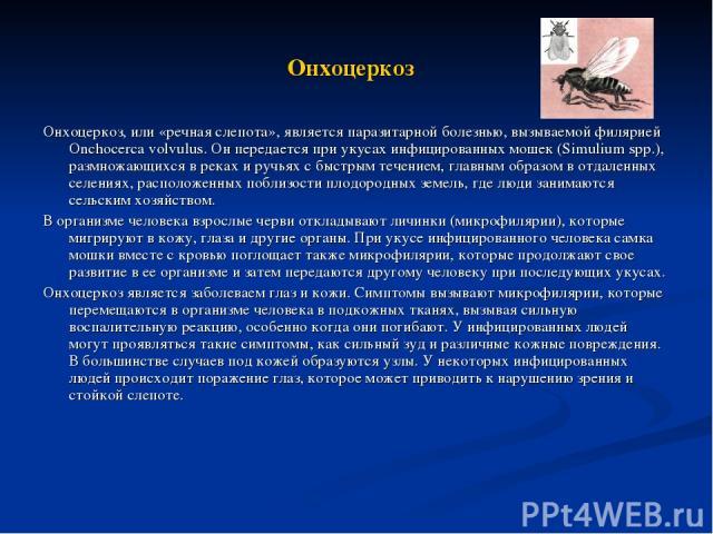 Онхоцеркоз Онхоцеркоз, или «речная слепота», является паразитарной болезнью, вызываемой филярией Onchocerca volvulus. Он передается при укусах инфицированных мошек (Simulium spp.), размножающихся в реках и ручьях с быстрым течением, главным образом …