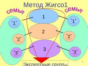 Метод Жигсо1 1 2 3 1 3 2 1 2 3 Экспертные группы * учитель биологии и информатик
