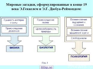 Мировые загадки, сформулированные в конце 19 века Э.Геккелем и Э.Г. Дюбуа-Реймон