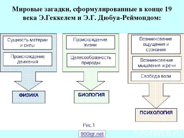 Мировые загадки, сформулированные в конце 19 века Э.Геккелем и Э.Г. Дюбуа-Реймондом: 900igr.net