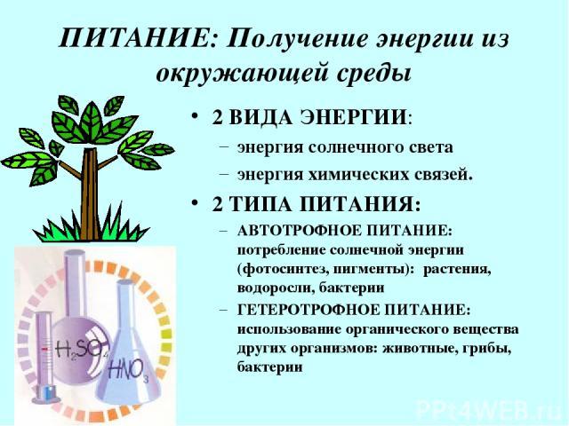 ПИТАНИЕ: Получение энергии из окружающей среды 2 ВИДА ЭНЕРГИИ: энергия солнечного света энергия химических связей. 2 ТИПА ПИТАНИЯ: АВТОТРОФНОЕ ПИТАНИЕ: потребление солнечной энергии (фотосинтез, пигменты): растения, водоросли, бактерии ГЕТЕРОТРОФНОЕ…