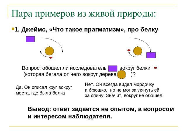 Пара примеров из живой природы: 1. Джеймс, «Что такое прагматизм», про белку Вопрос: обошел ли исследователь вокруг белки (которая бегала от него вокруг дерева )? Да. Он описал круг вокруг места, где была белка Нет. Он всегда видел мордочку и брюшко…