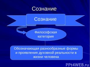 Сознание Сознание Философская категория Обозначающая разнообразные формы и прояв
