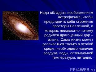 Надо обладать воображением астрофизика, чтобы представить себе огромные просторы