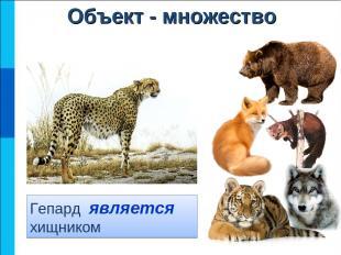 Гепард является хищником Объект - множество